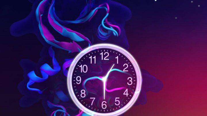 Molecular switch mechanism explains how mutations shorten biological clocks