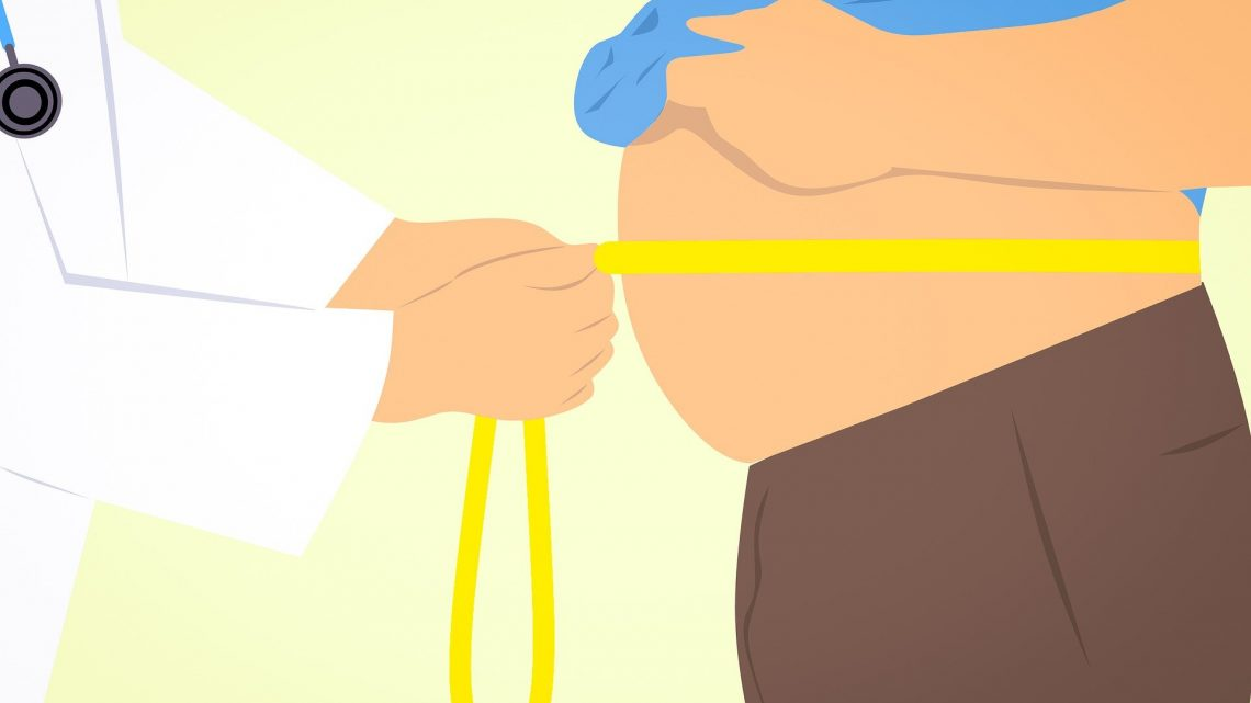 Study gives insights into how human fat cells are affected by age