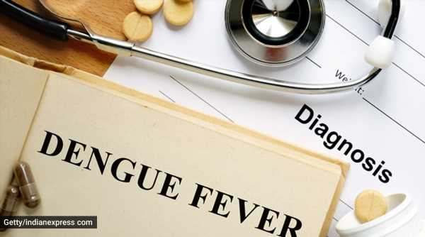 Mosquito-borne diseases: Causes, symptoms and prevention tips