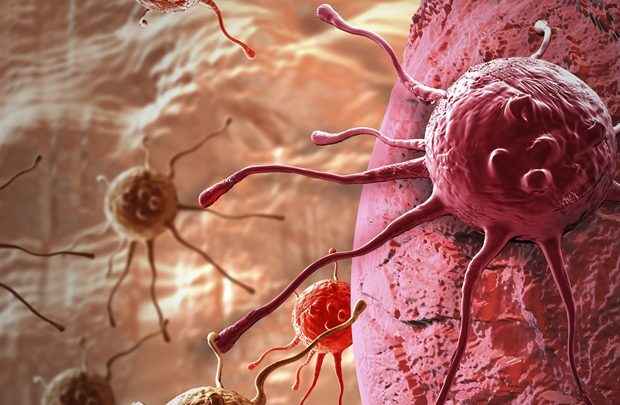 ACGT awards $500,000 to advance immunotherapy approach for treating solid tumors