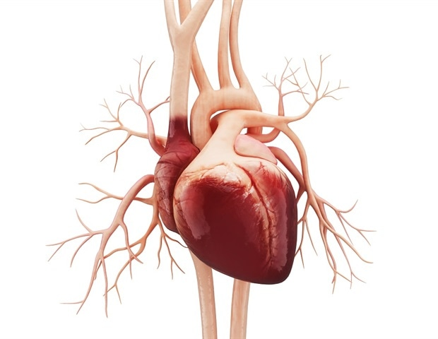 What Covid means for the athlete's heart